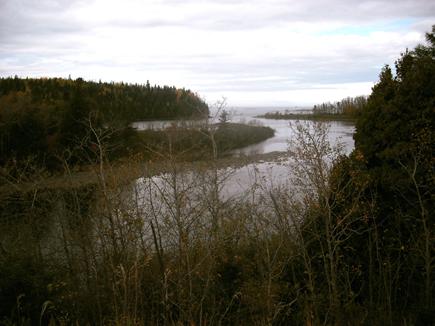 Rivière Mitis - Luci Côté - 2009