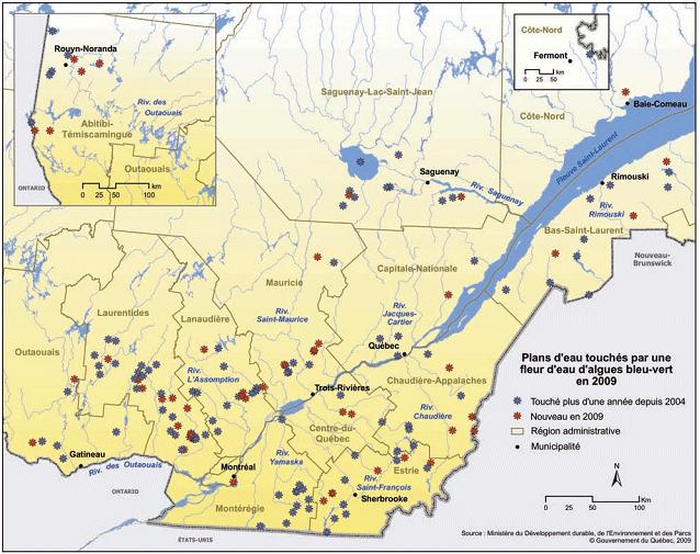 Tableau illustrant le nombre de lacs touchés par une fleur d'eau de cyanobactéries en 2009, par région du Québec.