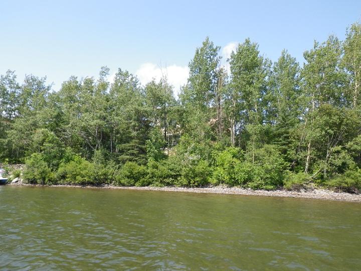 Bord de cours d'eau - Protection des rives (Auteur : OBVNEBSL, 2010)
